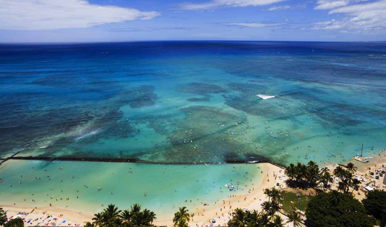 hawaii, пальмы, ocean, oblaka, небо, usa,