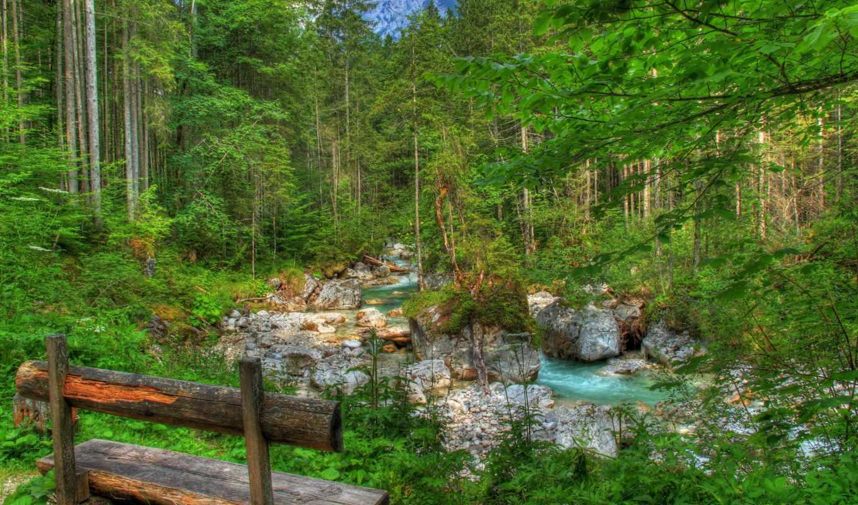 landscape, германия, природа, скамейка, бавария, лес, река,