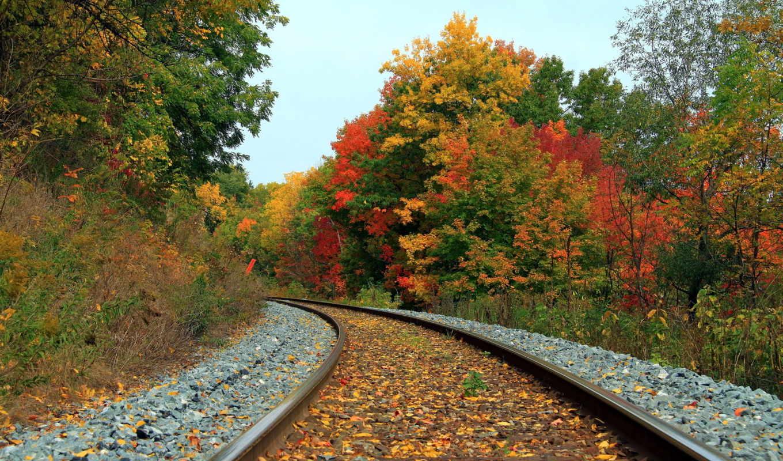 дорога, железная, осень, пейзаж, scenery,
