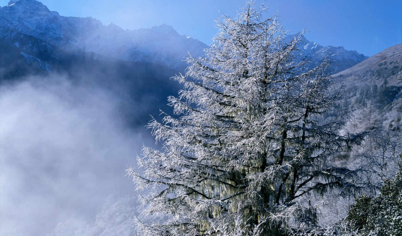 winter, природа, природы, япония, landscape,