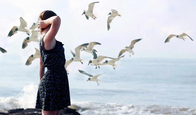 девушка, птицы, обстановка,