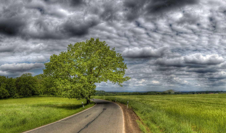 природа, облака, небо, loading, дорога, trees, грозовые, хмурые,