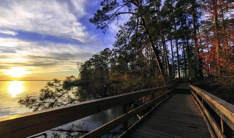 texas, ливингстон, озеро, state, park, мост, usa, паркс, животные, природа,