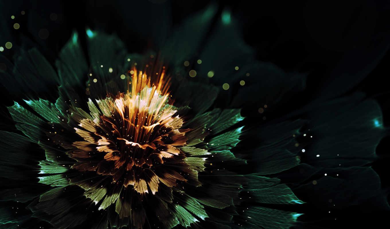 абстракция, графика, цветы, июня,