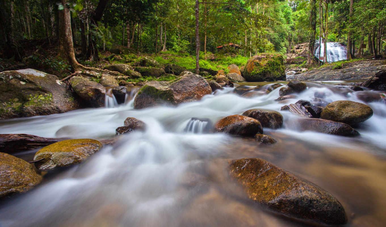 bukit, hijau, природа, lata, река, лес,