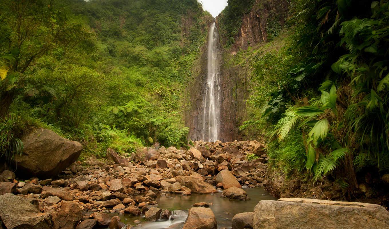 jungle, водопад, природа, река, скалы, лес,