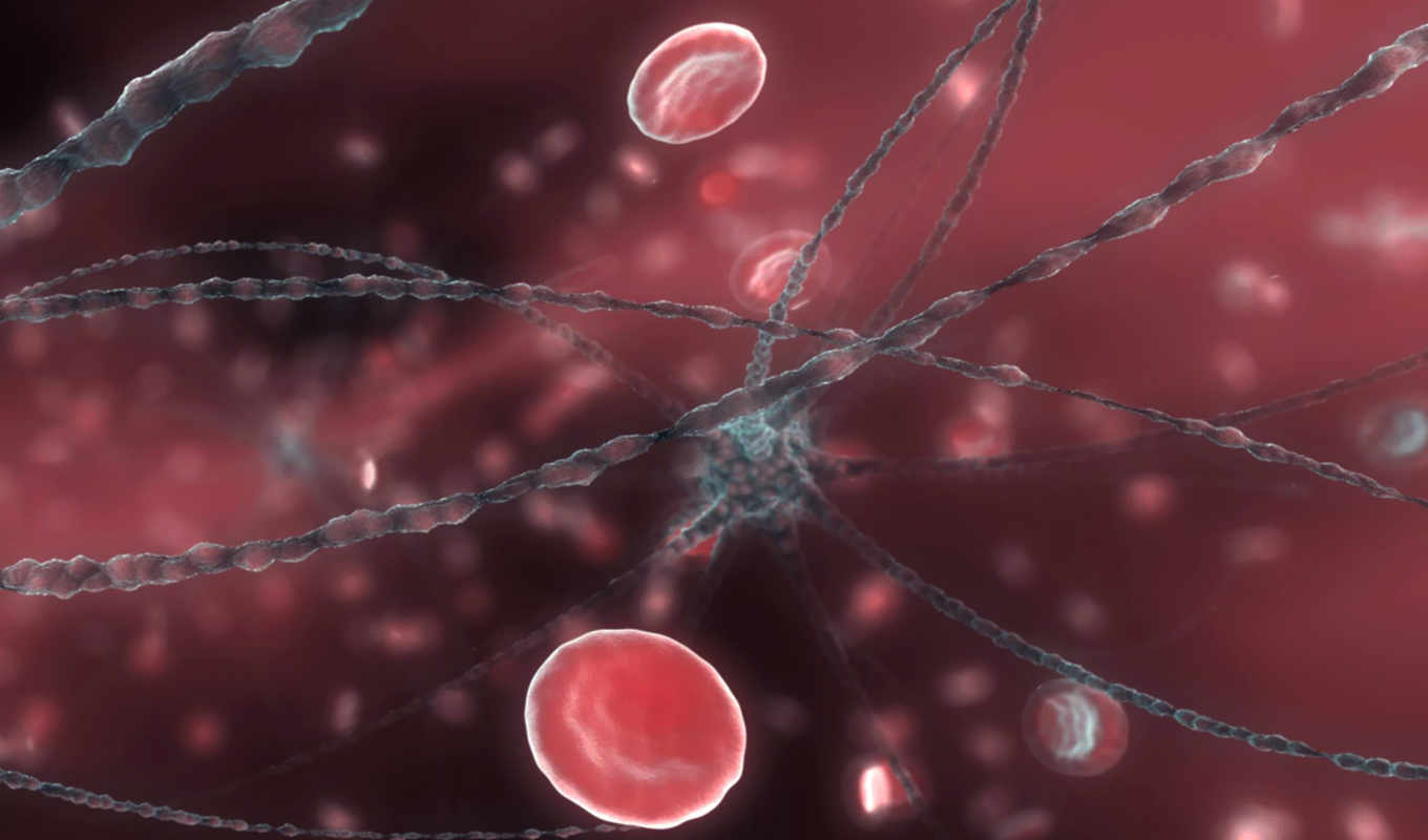 cells, blood, abstract, red, neuron, клетки, bloodcells, free, крови, mobile,