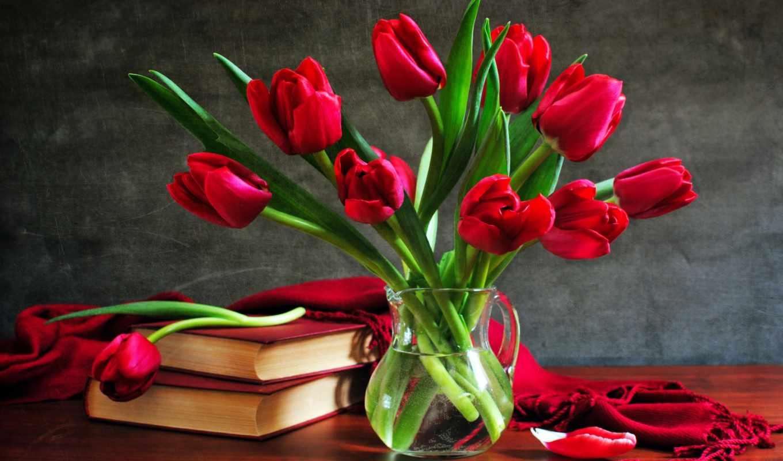 тюльпаны, марта, тюльпанов, цветы, красивые, букет, букеты, тюльпан,