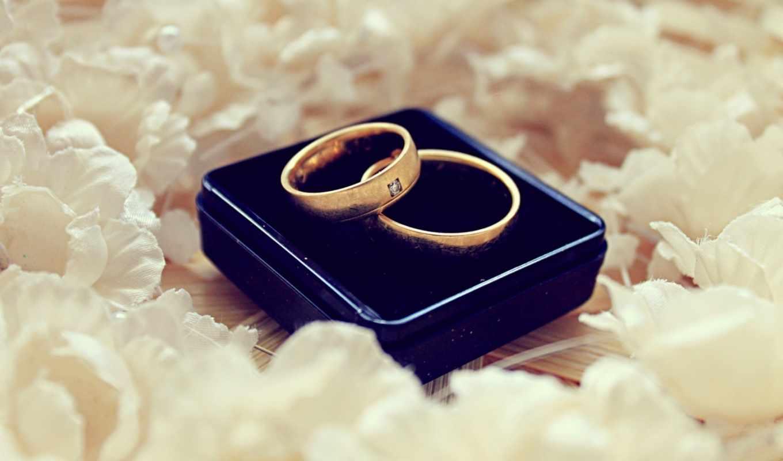 кольца, обручальные, свадьба, лепестки, белые