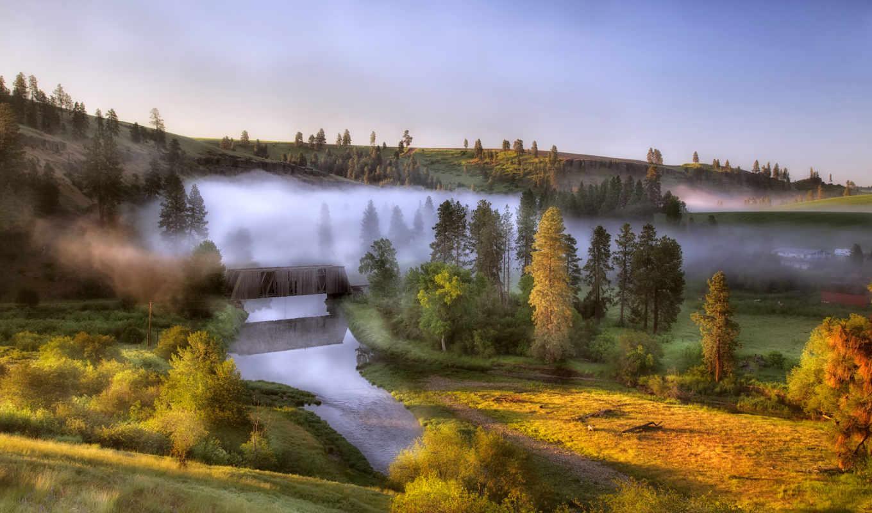 рассвет, туман, река, природа, деревья, категория, холмы,