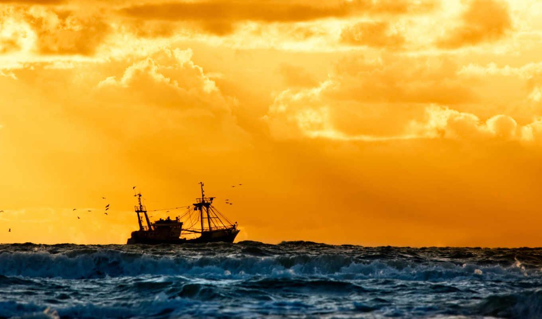 море, судно, корабль, флот, природа, пилот, лодка, fish,