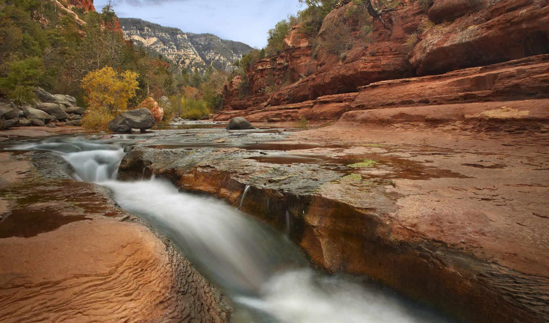 rock, formations, arizona, каньон, заводь, дуб, landscapes,