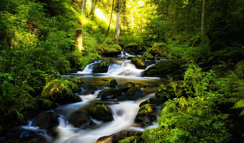 водопад, природа, лес, красивые, літо, trees, яркие, природы,