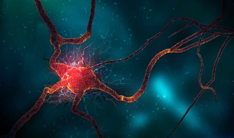 нейрон, high, this, full, resolutions, widescreen,