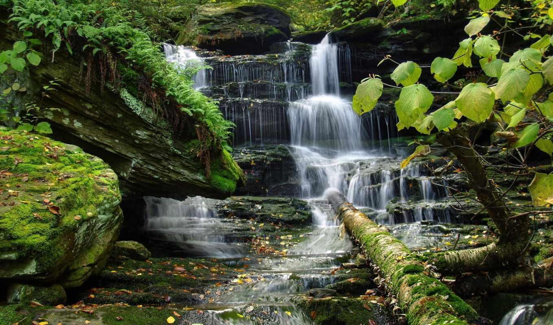 водопад, природа, красивые, деревья,