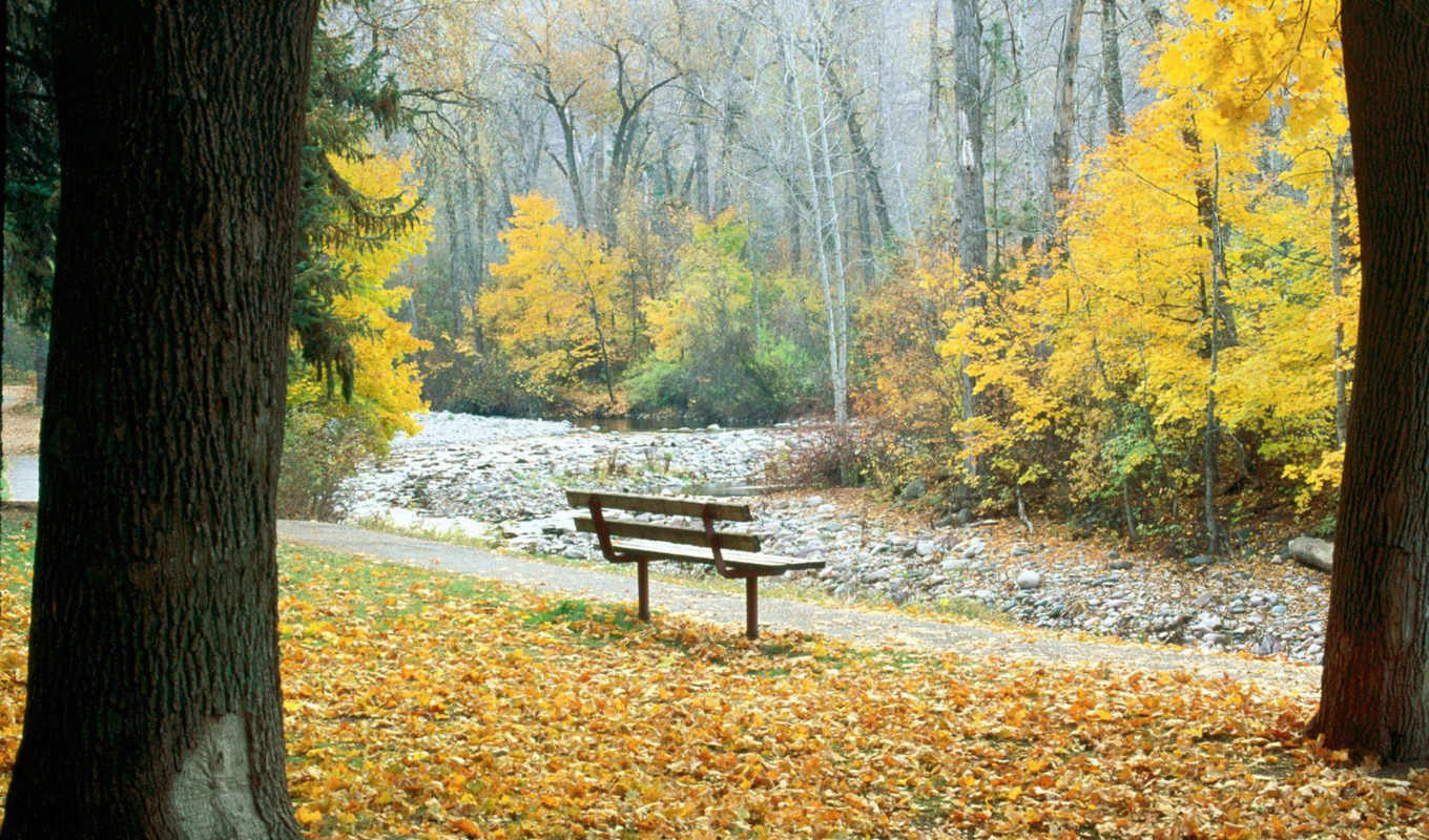 greenough, park, montana, missoula, осень, mùa, đẹp, bench, thu,