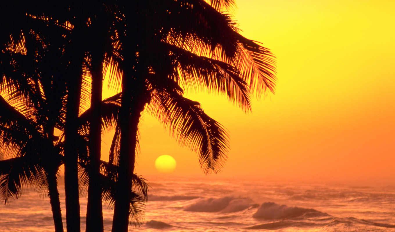 море, природа, закат, sun, ocean, waves, небо, туман,