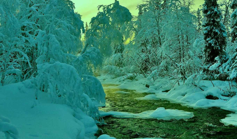 деревья, небо, снег, winter, лес, река,