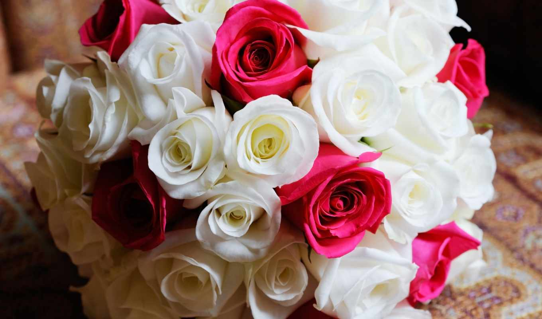цветы, розы, букеты, марта,