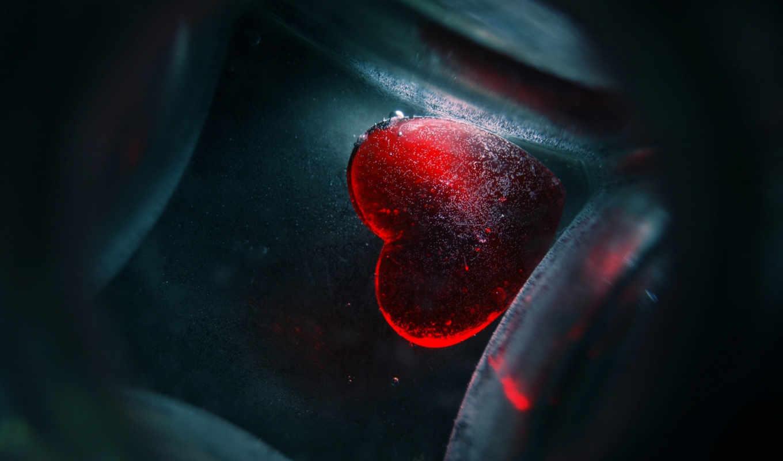 сердце, льду, сердца,