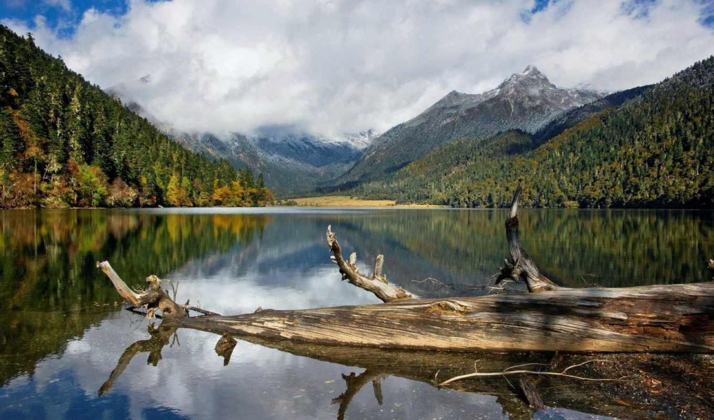 озеро, природа, high, water, wide, trees, отражение, lakes,