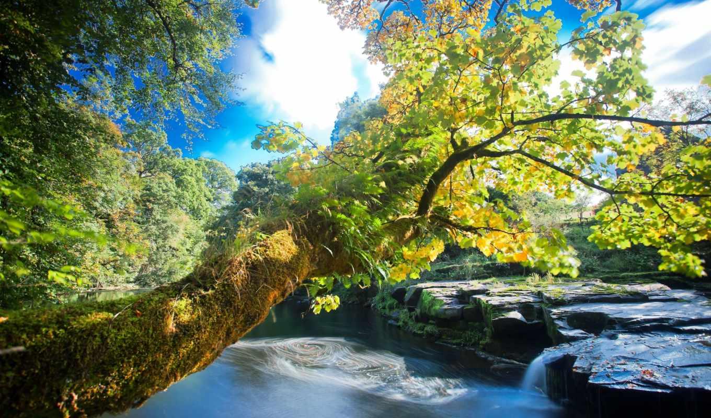 природа, водопад, деревья, река, осень, портал, скалы, категории,
