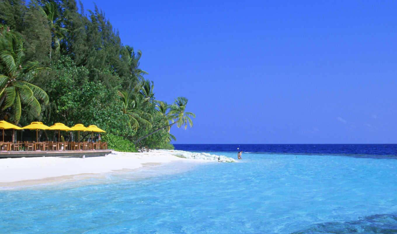 качественные, предпросмотром, мальдивские, острова, lagoon, море, моря,