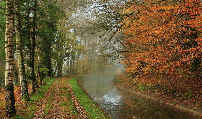 осень, река, природа, reki, лес, озера, туман, деревя, imagini, park,