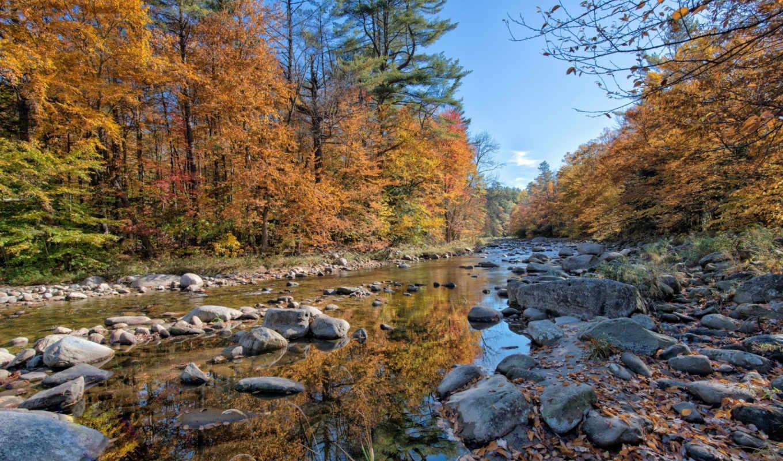 река, осень, лес, камни,