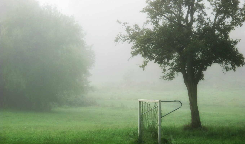 ворота, туман, поле, спорт, картинка, картинку,