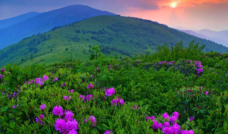 природа, горы, пейзаж, закат,