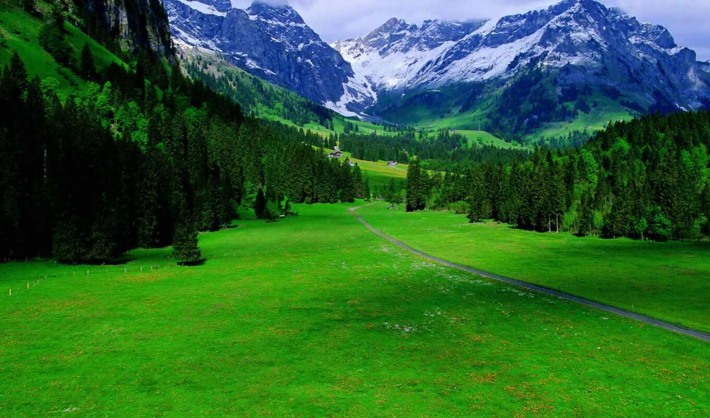 природа, красивые, природы, collector, mountains, wallpapersafari, большой,