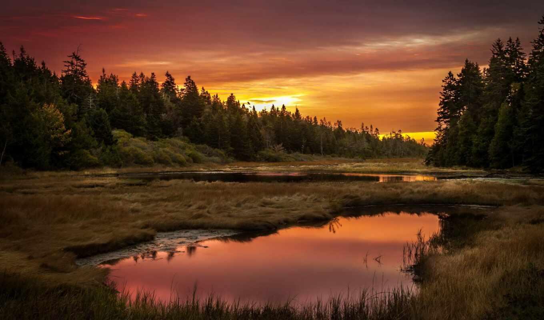 zakat, gora, les, солнце, ozero, небо, пульт, пейзаж, newline, дерево, interaktivnyi