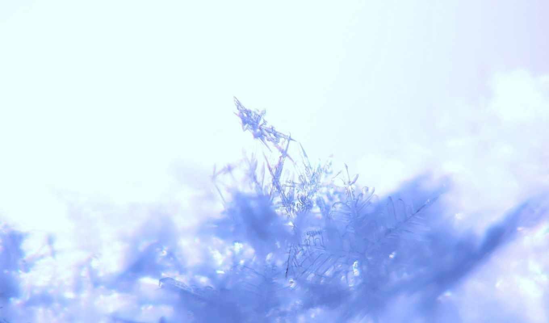 снег, снежинки, белый, картинка,