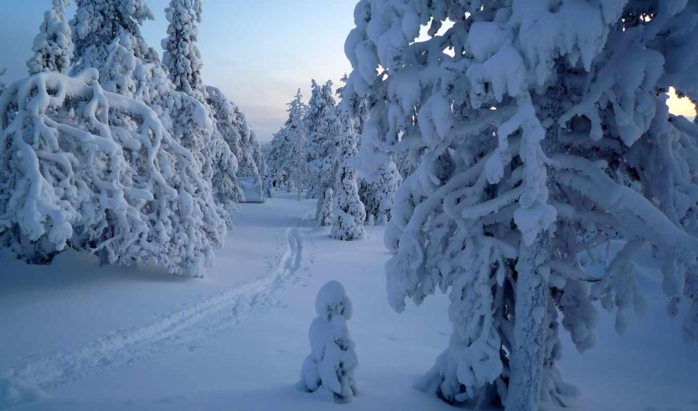 winter, природа, пейзажи -, kuusamo,