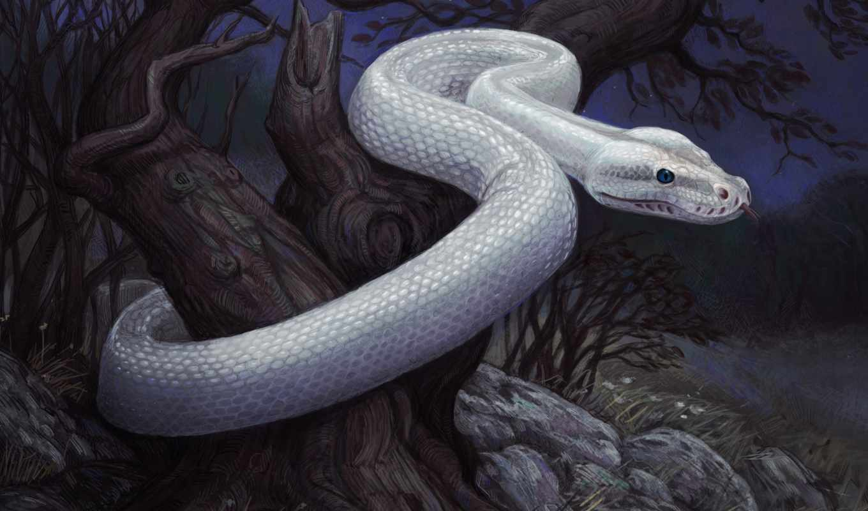 змеи, anime, девушки, snake, взгляд, сне, во, winter, язык, глаза, брюнетка, dream, животные,