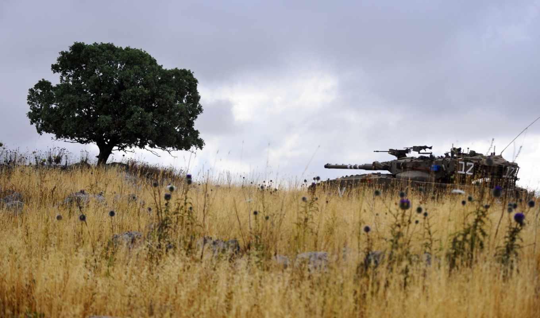 flowers, дек, tanks, tags, военный,