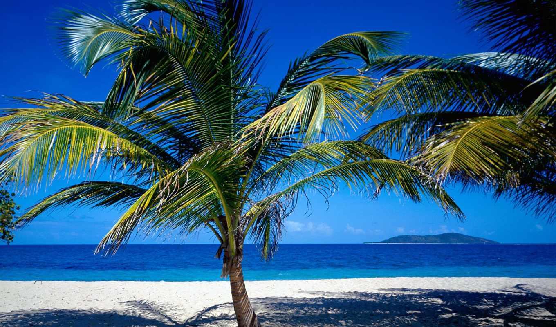 побережье, океана, тропическое, тропические, море, летние,