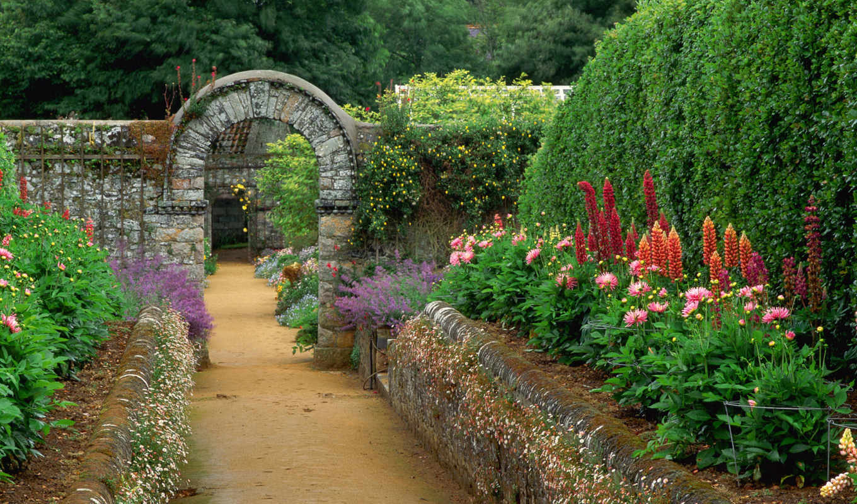 garden, тропинка, you, desktop, this, цветы, design,