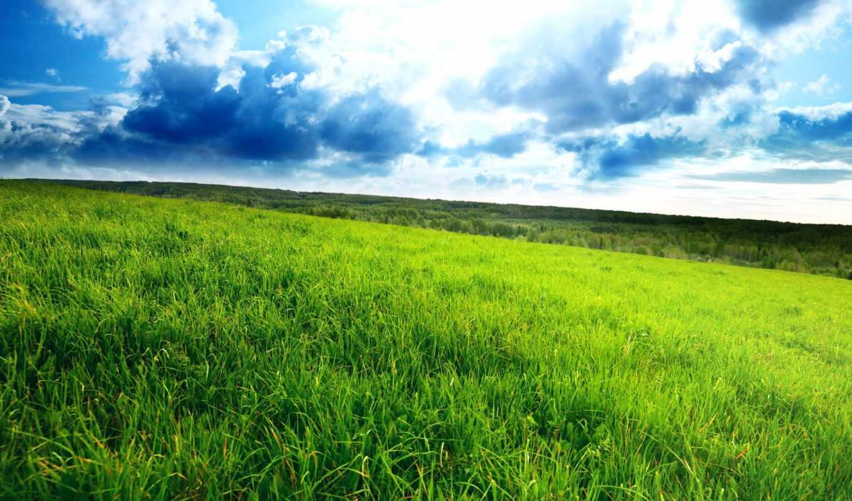 трава, зелёная, небо, облаками, поле, красивое, голубое, разных, разрешениях,