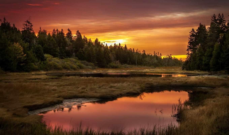 лес, закат, озеро, пейзаж, картинка, имеет, горизонтали, вертикали,