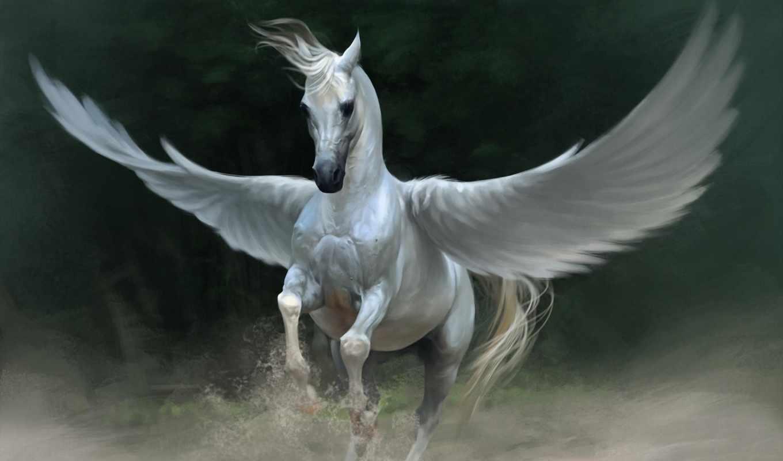 пегас, крылья, fantasy, лошадь, white, art,
