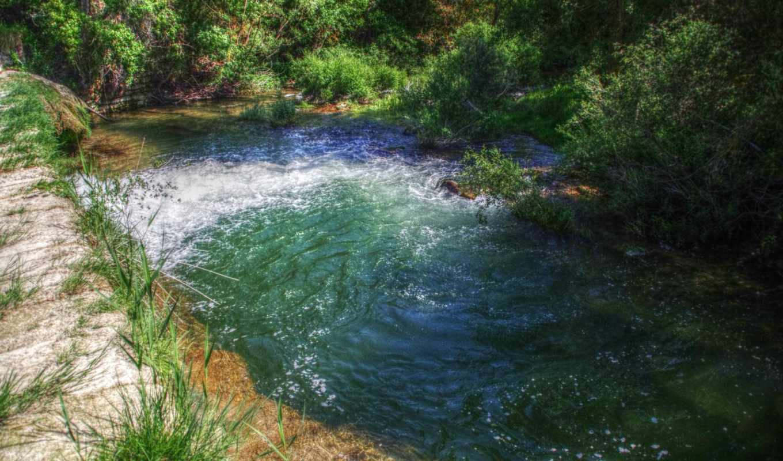 лес, река, картинка, природа, desktop, water, реки,
