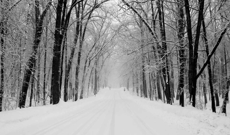 дорога, winter, снег, зимой, деревья, найти, парке, быстро, тегам, следующим, эти, можно, флот,