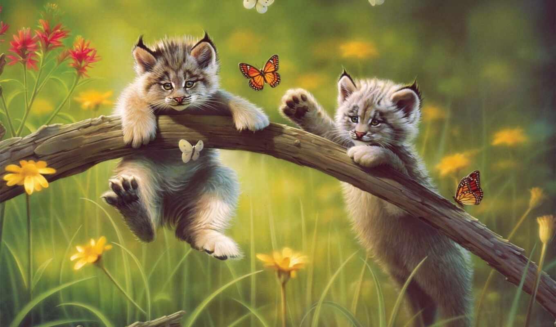 рысята, рысь, kartinka, малыши, бабочки, играют, разрешением, risunok, котята, бревно,
