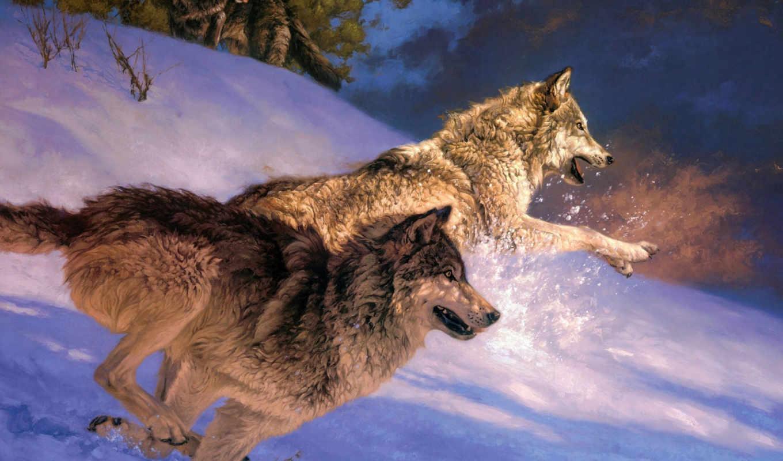 волки, волк, winter, снег, широкоформатные, лес,