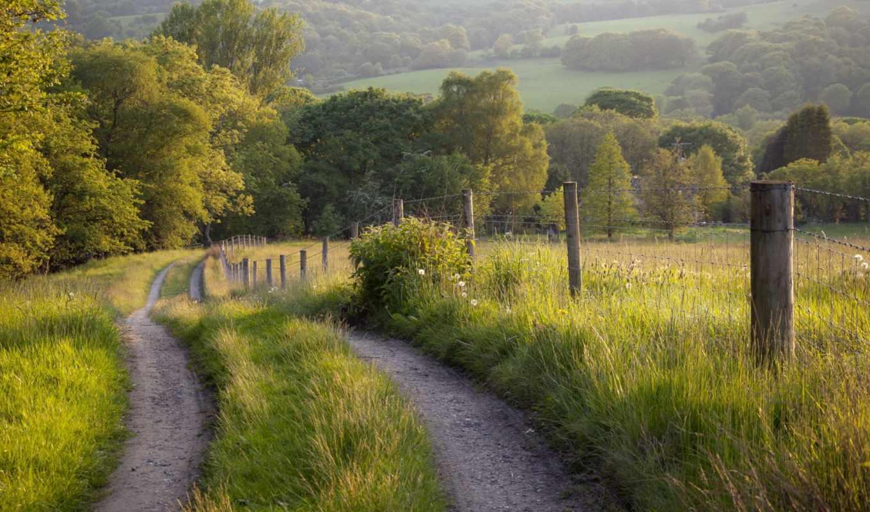 забор, пейзаж, дорога, лето, картинка,
