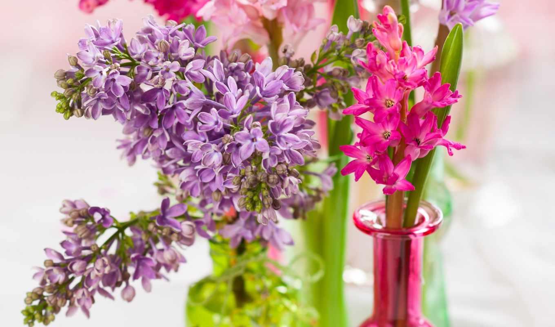 сирень, ваза, цветы, красочные,