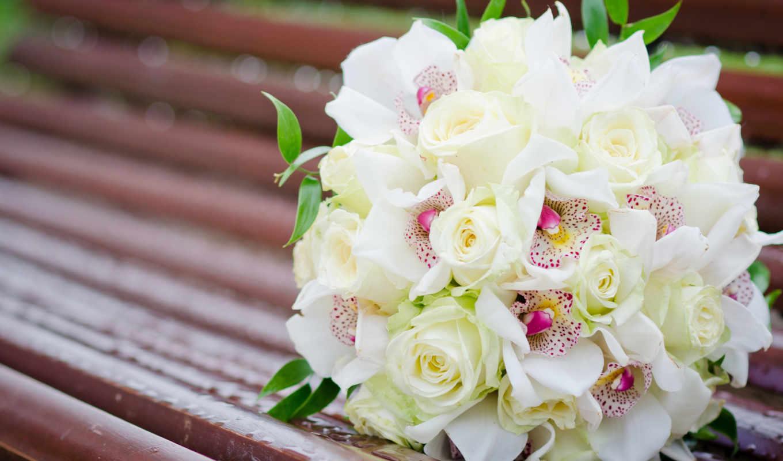 букет, цветы, розы, белые, орхидеи, скамейка,