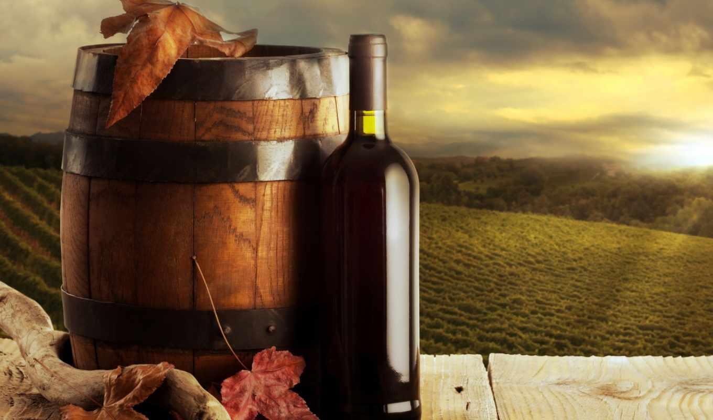 wine, quad, atm, еда, бочка, бутылка, листья,dual, напитки,